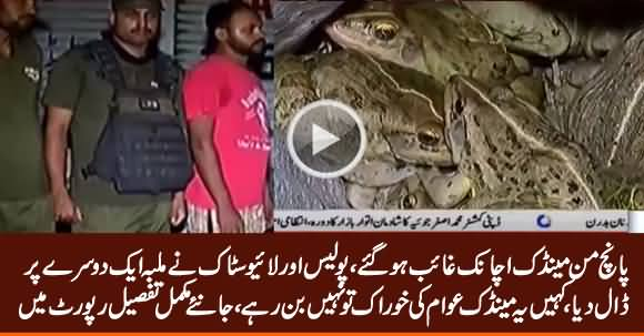 200 KG Frogs Disappeared, Police & Live Stock Blame Each Other