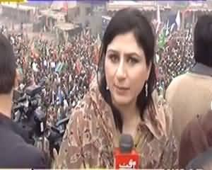 8pm with Fareeha (Tehreek e Insaaf Ke Dharne Ki Kahani) – 25th November 2013