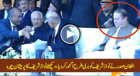 Afghan President Totally Ignored PM Nawaz Sharf and Started Chatting with Najam Sethi
