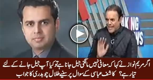 Agar Maryam Ne Kaha Jail Jana Hai Tu Aap Tayyar Hain Jail Jaane Ke Liye - Listen Talal Chaudhry's Reply