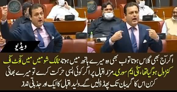 Agar Mazare Iqbal Per Koi Asi Harkat Karta To Uska Gireban Phaar Dete - Waleed Iqbal Bashes In Senate