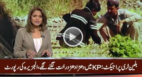 Al Jazeera's Report On Billion Tree Tsunami Project of KPK Govt