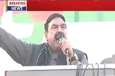 Ali tareen will play a important role in politics of Pakistan, Sheikh Rasheed