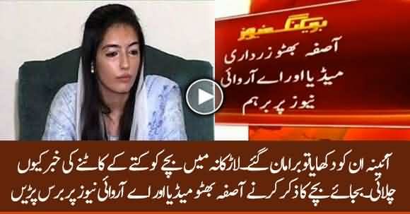 Aseefa Bhutto Angy On Media For Running Dog Bite Case On TV