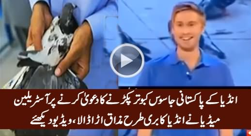 Australian Media Making Fun Of India For Saying Caught A Pakistani Spy Pigeon