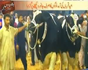 Bhais Badal Ke (Mandi Kay Ander Lut Ka Bazaar Tu Mandi Kay Bahar Lutaray Police Waley) – 13th October 2013