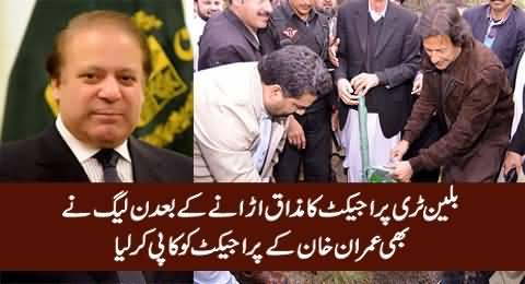Billion Tree Tsunami - PMLN Will Follow Imran Khan's Billion Tree Vision