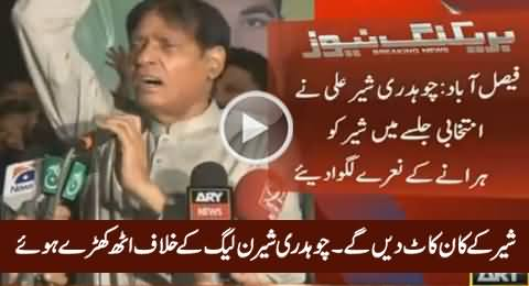 Breaking News: Chaudhry Sher Ali Chanting Slogans Against PMLN