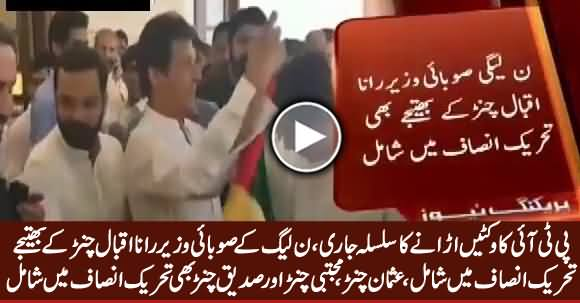 Breaking News: Nephew of PMLN's Provincial Minister Joins PTI