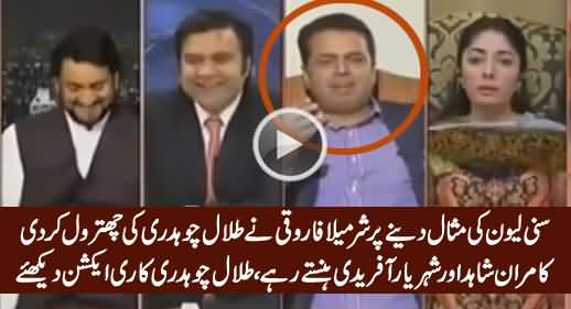 Classical Chitrol of Talal Chaudhry By Sharmila Farooqi on His Tweet About Suny Leon