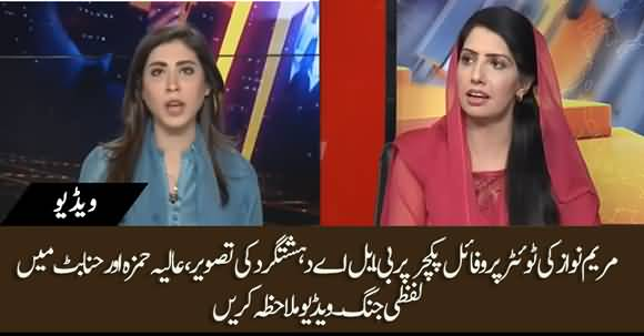 Debate Between Alia Hamza And Hina Parvez Butt About Maryam Nawaz's Profile Picture On Twitter