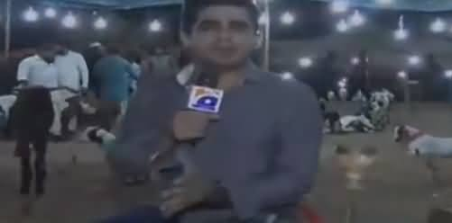 Eid Special on Geo (Janwaron Ki Khareed o Farokht) - 21st August 2018