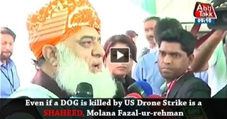 Even If a Dog is Killed by America, I will declare him Shaheed - Maulana Fazal ur Rehman