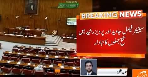 Exchange of Harsh Words Between Faisal Javed Khan & Pervez Rasheed in Senate