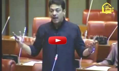 Faisal Raza Abidi Last Blasting Speech in Senate Before Resignation
