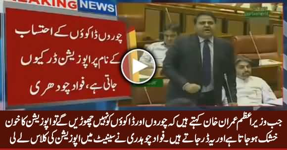 Fawad Chaudhry Takes Class of PMLN And PPP In Senate