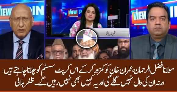 Fazlur Rehman Wish To Make Imran Khan's Govt Weaker And Continue Corrupt System - Zaffar Hilaly