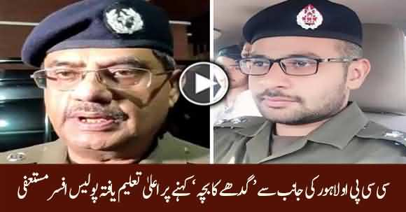 Foreign Qualified Police Officer Resigns After CCPO Lahore Umar Sheikh Called Him 'Gadhy Ka Bacha'