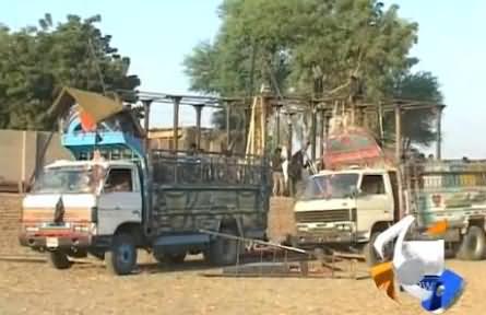 Geo News Report on PTI Preparations For Historical Jalsa in Larkana