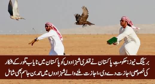 Govt of Pakistan Issued Special Permit To Qatari Princes For Hunting Protected Houbara Bustard