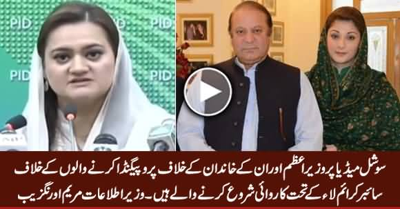 Govt to Act Against Propaganda Campaign Targeting PM & His Family - Information Minister