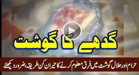 Haraam Aur Halaal Gosht Mein Farq Maloom Karein, Amazing Video, Must Watch