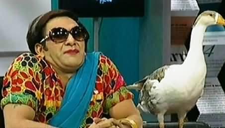Hilarious Parody of PTI Shireen Mazari By Media Azad Hai Team
