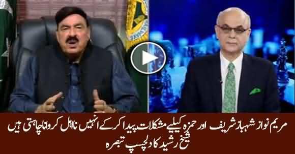 How Much Maryam Nawaz Acts Will Damage Shehbaz Sharif And Hamza? Sheikh Rasheed Explains