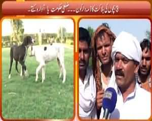 Hum Log (3 Bachon Ko Kutton Ne Maar Diya) – 20th June 2015