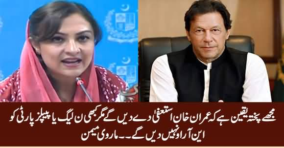I Genuinely Believe That Imran Khan Will Resign But Not Give NRO to PMLN or PPP - Marvi Memon