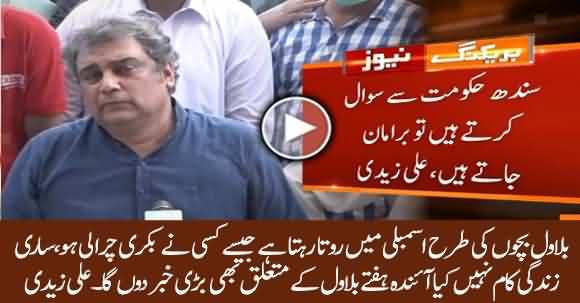 I Will Break A Big News Regarding Bilawal Bhutto Very Soon - Ali Zaidi Bashes Bilawal Bhutto