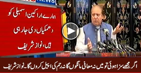 I Will Not Apologize or Ask For Mercy If Jailed - Nawaz Sharif