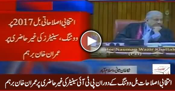 Imran Khan Angry on PTI Senator For Being Absent During Voting in Senate
