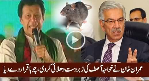 Imran Khan Ne Khawaja Asif Ko Ragar Diya, Choha Qarar De Diya