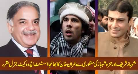 Imran Khan's Nephew Appointed As Assistant Advocate General After the Approval of Shahbaz Sharif