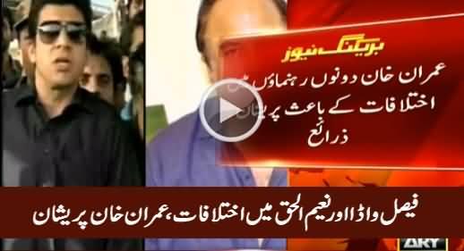 Imran Khan Worried Due to Differences Between Naeem ul Haq & Faisal Vawda