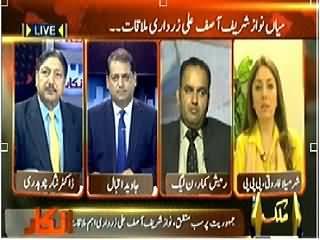 Inkaar (Nawaz Sharif and Asif Zardari Meeting, What Purpose?) - 16th April 2014