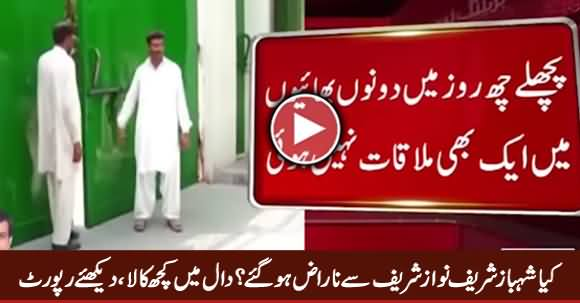 Is Shahbaz Sharif Angry With Nawaz Sharif, What Is Going On in Raiwind, Watch Report