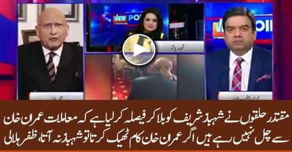 It Has Been Decided To Launch Shehbaz Sharif Instead Of Imran Khan - Zafar Hilali