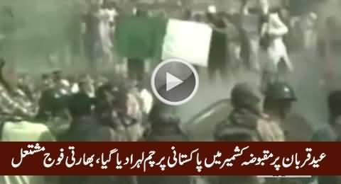 Kashmiris Raised Pakistani Flag in Occupied Kashmir on Eid-e-Qurban