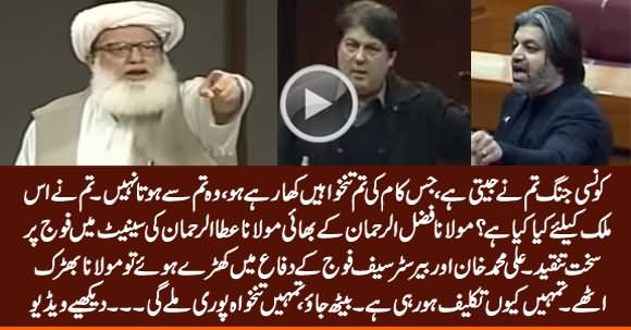 Kaunsi Jang Tum Ne Jeeti Hai? Maulana Ata ur Rehman's Speech Against Army in Senate