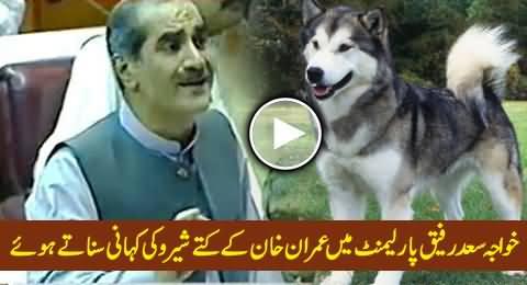 Khawaja Saad Rafique Telling A Story of Imran Khan's Dog Sheru in Parliament