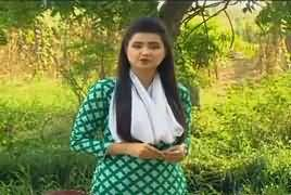 Khufia (Crime Show) On Abb Tak – 16th August 2017