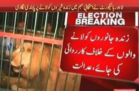 Lahore High Court Orders to Stop Use of Wild Animals in Election Campaigns