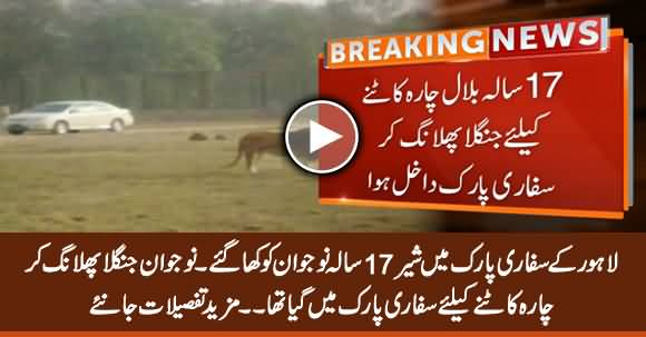 Lions Killed 17 Years Old Boy in Lahore's Safari Park