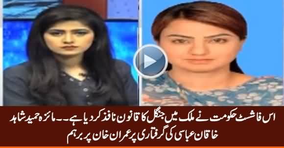 Maiza Hameed Bashing Govt on Shahid Khaqan Abbasi's Arrest