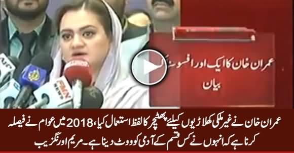 Maryam Aurangzeb Bashing Imran Khan on His Statement About International Players