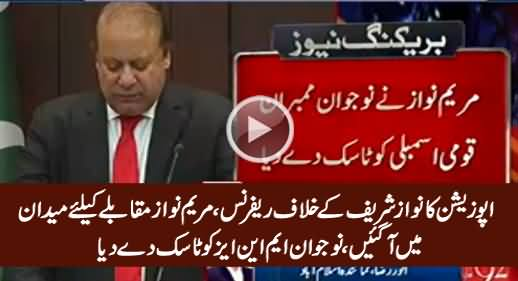 Maryam Nawaz Gives Task To Young MNAs Regarding Opposition's Reference Against PM