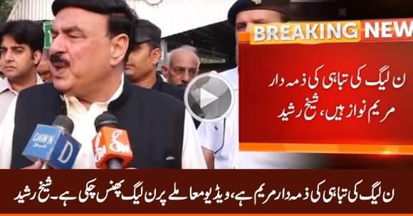 Maryam Nawaz Is Responsible For Destruction of PMLN - Sheikh Rasheed