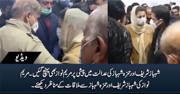 Maryam Nawaz Meets Shahbaz Sharif And Hamza Shahbaz in Accountability Court